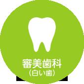 審美歯科(白い歯)